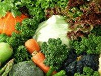 Tarım Dairesi, gıda denetimlerinin sonuçlarını açıkladı