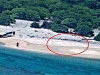 Kuma yazdıkları SOS mesajı kurtuluşları oldu!