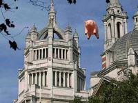 Pink Floyd'un domuzu Londra semalarında!
