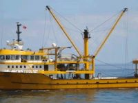 Gırgırla av izni 50'den 35 metre derine indirildi
