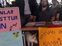 DAÜ Hayvan Dostu Kampüs Projesi Büyüyor