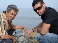 Çok sayıda ölü balık sahile vurdu