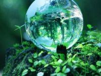 WWF: İnsanlığa tek gezegen yetmeyecek