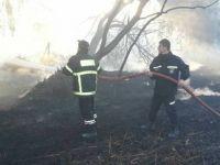 Cengizköy'de yangın...