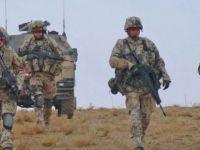 Danimarka, Irak-Suriye sınırına asker gönderecek