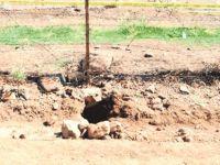 Güvenlik güçleri tarafından Alcaçuz Cezaevi'nde 3 tünel bulundu