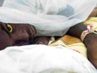 Sarıhumma salgınında hayatını kaybedenlerin sayısı 35'e yükseldi