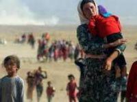 Kanada 800 Yezidi'yi daha kabul edecek