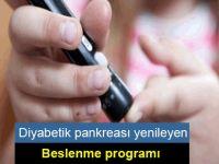 'Diyabetik pankreası yenileyen' beslenme programı