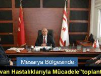 """Mesarya Bölgesinde """"Hayvan Hastalıklarıyla Mücadele"""" toplantısı"""