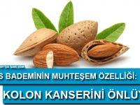 """Kıbrıs bademi kolon kanserini önlüyor"""""""