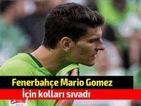 Fenerbahçe Mario Gomez için kolları sıvadı
