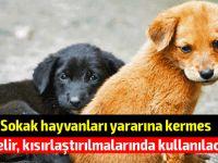 """""""Sokak hayvanları yararına kermes düzenleniyor"""""""