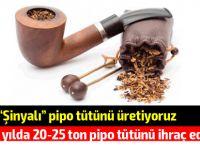 KKTC yılda 20-25 ton pipo tütünü ihraç ediyor!