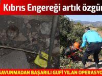 Sivil Savunma'dan başarılı Gufi yılan operasyonu