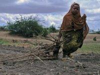 Somali'de 6,2 milyon kıtlık tehdidi altında