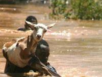 Kenya'daki sel felaketi