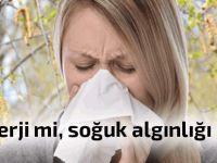Bu önerilerle alerjiden korunabilirsiniz