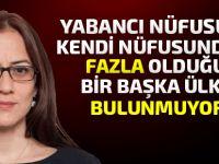 """İçişleri Bakanı Evren: """"Keyfi vatandaşlık vermiyoruz"""""""