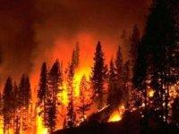 İspanya'da orman yangını... 2 binden fazla kişi evini terk etmek zorunda kaldı