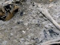 İtalya'da metro inşaatında arkeolojik kalıntılar bulundu