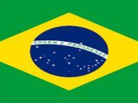 Brezilya Devlet Başkanlığı Sarayı'na aracıyla girmeye çalıştı