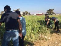 """Tarım Dairesi """"Tarla Günü ve Gece Eğitimi"""" etkinlikleri devam ediyor"""