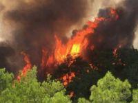 Fransa'daki yangın 2 gündür sürüyor: 5 bin hektar kül oldu!