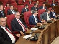 Rum Meclis kararının kınanması için Meclis'e öneri sunuldu