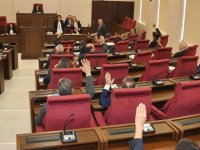 Seçim yasasına 2 TDP milletvekili ve Çakıcı'dan ret