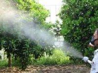 Yayla'da tarım ilaçları konusunda bilgilendirme yapılacak