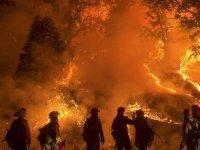 California'da yangın!