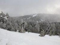 Trodos'a kar, Baf'a şiddetli dolu