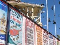 Yenierenköy Belediyesi için erken seçim yok