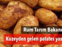 Rum Tarım Bakanı:Kuzeyden gelen patates yasal