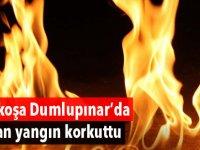 Lefkoşa Dumlupınar'da çıkan yangın korkuttu