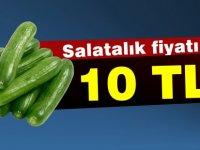 Salatalığın fiyatı dudak uçuklattı