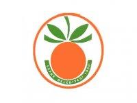 Lefke İmar Planı, çalışmaları hakkında Lefke Belediyesi'nden bilgilendirme