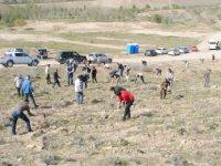 İnşaat Mühendisleri Odası Ormanı'na 4 bin 580 fidan dikildi