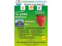 """""""13. Geleneksel Çilek Festivali"""" 28 Nisan-1 Mayıs'ta yapılıyor"""