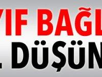 """""""DAHA ZAYIF BAĞLARLA BİR MODEL DÜŞÜNELİM"""""""