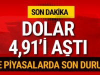 Dolar 4,91 TL'yi geçti son durum ne? Dolar ne kadar olacak?