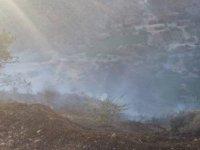 Yangın kontrol altına alındı, 100 dönüm yandı