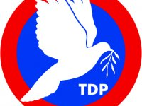 TDP Anayasa Oylamasına 'Hayır' Diyecek