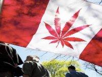 Kanada'da hintkeneviri artık yasal