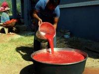 Hatay'da domates salçasının sofralara yolculuğu başladı