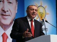 Erdoğan'dan Türk Konseyi'ne 'yerli para' önerisi