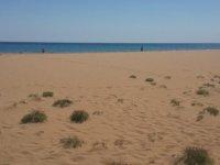 Altınkum Sahili Tertemiz Oldu