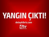 Lefkoşa Hamitköy'de çıkan yangın korkuttu