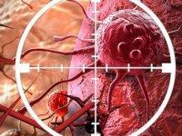 Kanser tedavisinde çığır açacak ilaç